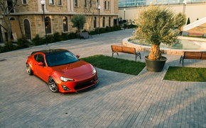 Picture tree, top, Toyota, GT86, Rocket, Bunny