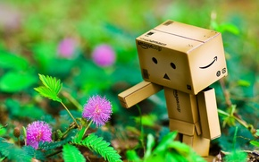 Picture flowers, hand, danbo