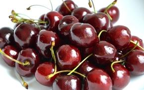 Picture berries, food, cherry, food, Burgundy, cherry