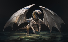 Picture dragon, wings, art