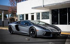 Picture reflection, grey, the building, Windows, lamborghini, side view, grey, aventador, lp700-4, Lamborghini, aventador