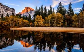 Picture forest, landscape, mountains, Park, river