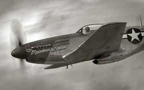 Picture fighter, cabin, pilot, flight