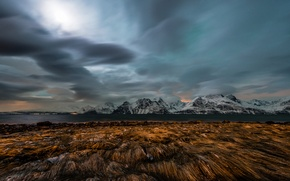 Picture grass, water, winter, clouds, Northern Lights