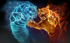 Picture water, tiger, fire, magic, the game, perfume, art