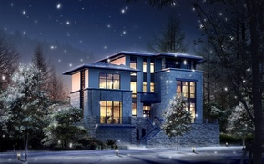 Picture winter, light, snow, House, lights