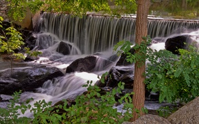 Picture water, trees, stones, waterfall, nature.