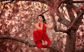 Picture girl, red dress, on the tree