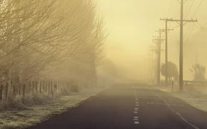 Picture road, landscape, fog, morning