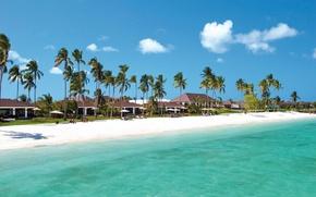 Picture beach, palm trees, the ocean, resort, Tanzania