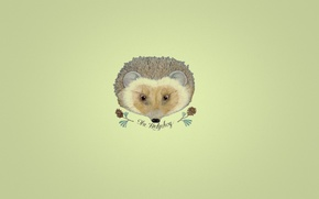 Picture the inscription, minimalism, branch, hedgehog, bumps, yellow background, hedgehog