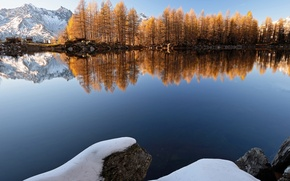 Picture winter, forest, snow, trees, mountains, lake