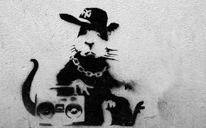 Wallpaper Banksy, Graffiti, Rap Rat