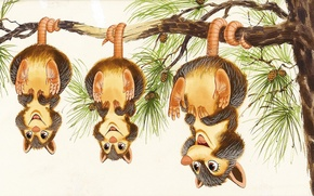Picture tree, mood, branch, art, possum, children's