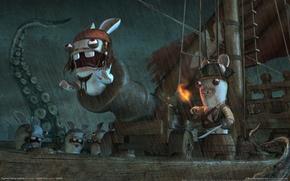 Wallpaper humor, Rabbits, Pirates, Sparrow