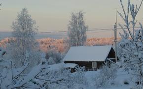 Wallpaper trees, house, snow, Winter