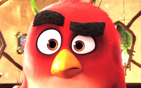 Picture cinema, Red, game, feathers, island, birds, cartoon, movie, face, painting, hero, film, decoration, angry, Angry …