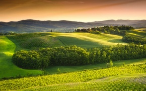 Picture the sky, trees, landscape, nature, Italy, Landscape, sky, trees, Italy, nature, the countryside, green field, …