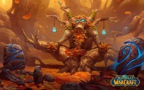 Picture WoW, World of WarCraft, WarCraft, Druid
