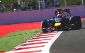 Picture Racer, Formula 1, Sebastian Vettel, Champion