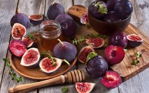 Picture honey, plum, figs