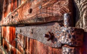 Picture metal, tree, rust