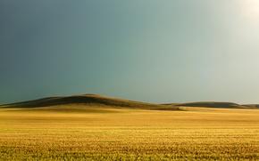Picture field, grass, the sun, hills, grass, sunshine, field, hills