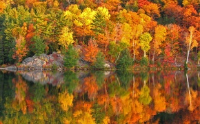 Wallpaper autumn, trees, reflection, rocks, paint, slope, Canada, Ontario, lake George