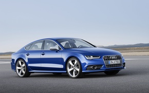Picture Audi, 2016, Audi s7