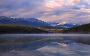 Picture forest, clouds, mountains, morning