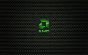 Picture comp, AMD, BRAND
