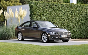 Picture grass, bmw, grille, F30, 3 Series