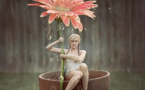 Picture flower, girl, drops, art, shower