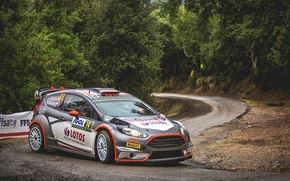 Picture Ford, WRC, France, Rally, Rally, Fiesta, Robert Kubica, Tour de Corse