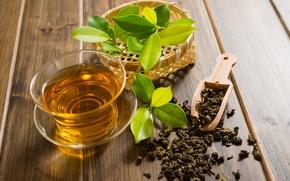 Picture leaves, brew tea, green tea