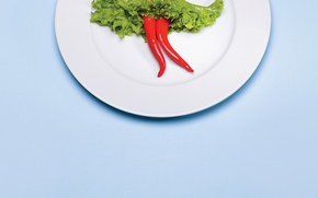 Picture creative, plate, pepper, salad, potatoes