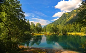 Picture cloud, forest, tree, mountains, nature, lake, tree, lake, mountains, clouds, nature, forest