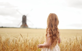 Picture hair, child, mill, girl, red, curls