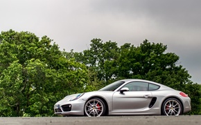 Picture Porsche, Cayman, silver, trees