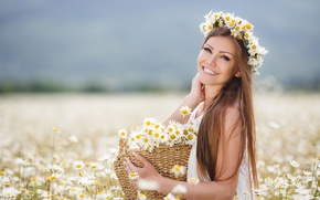 Picture field, girl, flowers, basket, chamomile, girl, brown hair, brown hair, basket, chamomile, field flowers