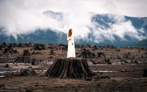 Picture girl, stump, dress