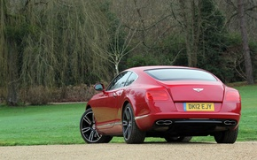 Picture grass, trees, red, Bentley, red, grass, continental, tree, Bentley