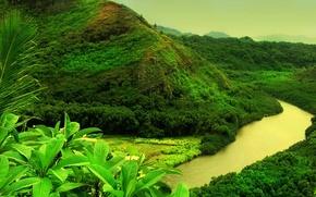 Wallpaper mountain, greens, river