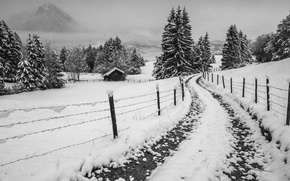 Picture house, misty, road, winter, mountain, snow, fog, fence, village, freeze, countryside, farm, foggy, mist, cloudy, …