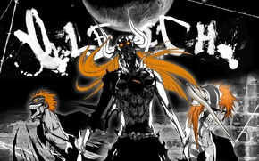 Picture anime, bleach, the form is blank
