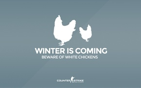 "Wallpaper CS GO, Counter Strike Global Offensive, Серия ""CS GO Situation"", Beware of white chickens, Winter ..."