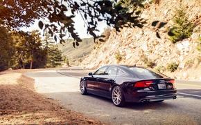 Picture Audi, Audi, black, wheels, black, rearside