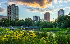 Picture the sky, grass, clouds, trees, landscape, sunset, flowers, the city, pond, Park, skyscrapers, the evening, …