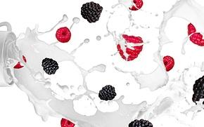 Picture squirt, raspberry, milk, fruit, BlackBerry