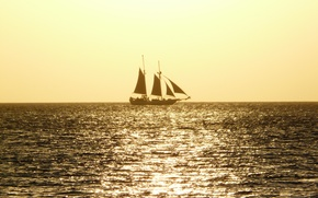 Picture sea, the sun, the way, ship, sails, yellow